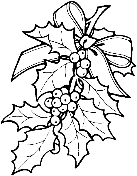 sprig-of-holly
