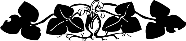 banner-ivy