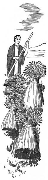 sheaves-of-wheat
