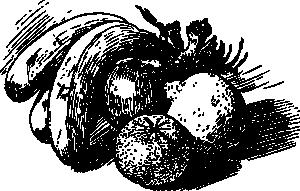 fruit-sketch