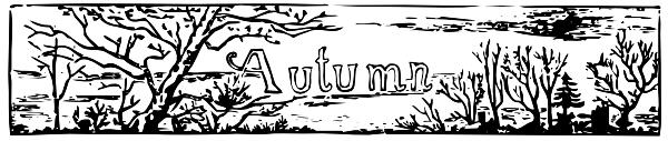 autumn-border