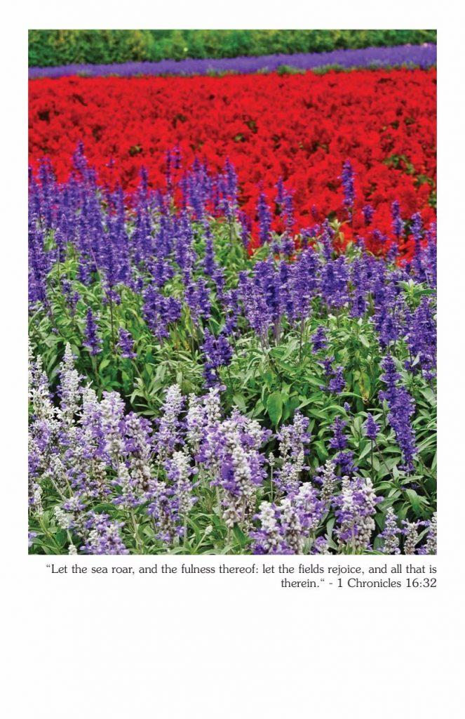bulletin-cover040217-1-chronicles-16-32