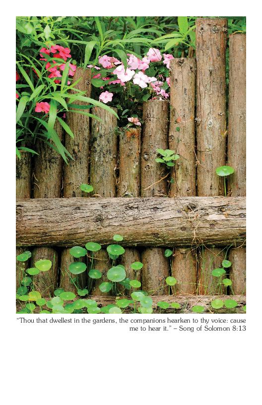 Summer Bulletin Cover | Song of Solomon 8:13 - Master ...